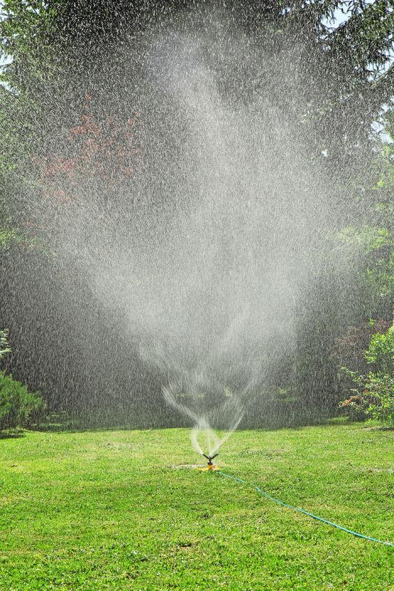 41737629 - Garden Sprinkler On A Sunny Summer Day